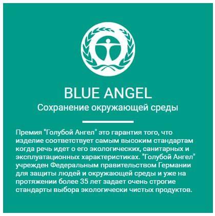 BLUE ANGEL.jpg